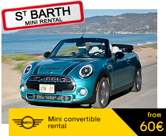 mini rental package