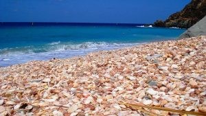 shellbeach_stbarth