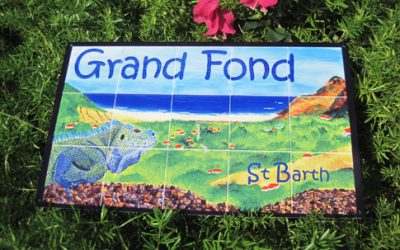 SAINT-BARTH: Grand Fond, between mystery and authenticity!